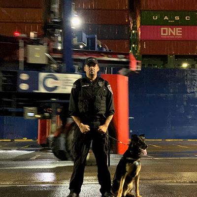 Canine Security Services by 3DK9 Detection Services.  K9 Security and Protection Services.